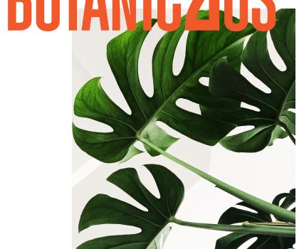 Botànic2 i el Dret Civil Valencià